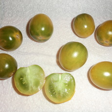 Preview green grapes 1  6.8.17