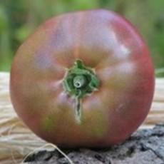 Preview tomatehugeblack