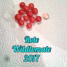 Preview img 20170922 wa0021
