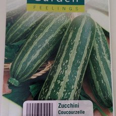 Preview zucchini coucourzelle 1