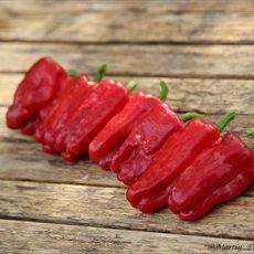 Preview paprika samen