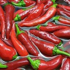 Preview chili 1