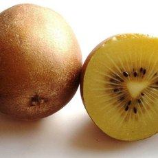 Preview gelbe kiwi 1