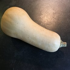 Preview butternut