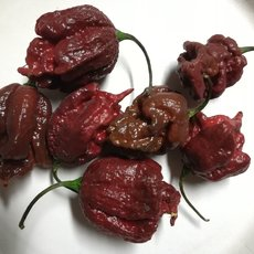 Preview carolina reaper chocolate