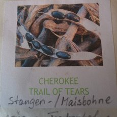 Preview cherokee trail of tears