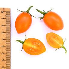 Preview 306 datteltomate orange